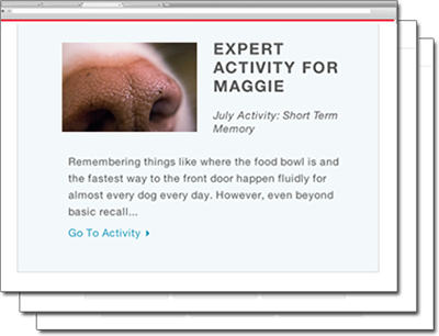 Screenshot of an example expert activity