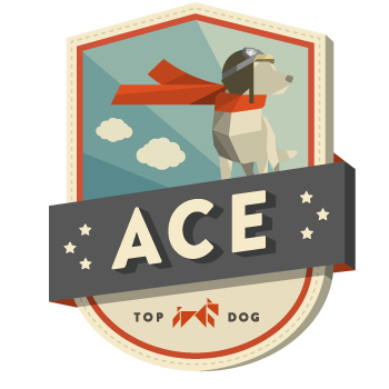 Ace-badge