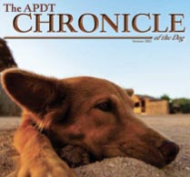 Chronicle-dog